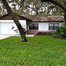 Beautifully Remodeled in an Active 55+ Community! - New Port Richey, FL 34654