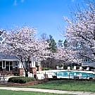 Argyle Place Apartments - Hickory, North Carolina 28601