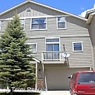 113 Mountain Vista Lane - Silverthorne, CO 80498