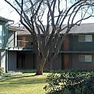 503SqFt 1/1 In Downtown - San Antonio, TX 78201