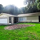 13702 COUNTRY COURT DRIVE - Tampa, FL 33625