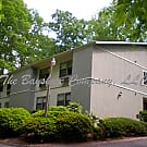 Furnished Studio Apartment convenient to Downtown - Asheville, NC 28803