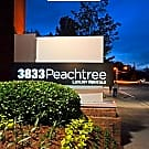 3833 Peachtree - Brookhaven, GA 30319