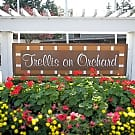 Trellis on Orchard - Tacoma, WA 98467