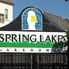 Spring Lake Lakehomes - Houston, Texas 77080