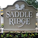 Saddle Ridge - San Antonio, Texas 78240