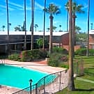 Palace Apartments - Tucson, Arizona 85719