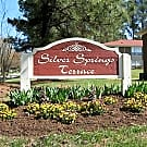 Silver Springs Terrace - Hickory, North Carolina 28601