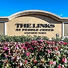 The Links at Pebble Creek - Tampa, FL 33647