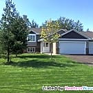 Brand New Construction 4BD/2BA Home In Blaine!!! - Blaine, MN 55434