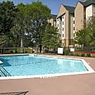 Treehouse Apartments - College Station, TX 77840