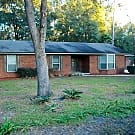 1670 Lemonwood Rd - Saint Johns, FL 32259