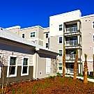 Summerset Apartments - Zephyrhills, FL 33542