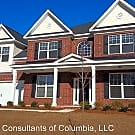 556 Bronze Drive - Lexington, SC 29072