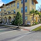 Circa Properties at Midtown - Gainesville, FL 32603