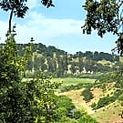 Highlands of Marin - San Rafael, CA 94903