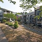 SunStone Apartments - Chapel Hill, North Carolina 27514