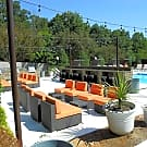 The U - University Apartments Raleigh - Raleigh, NC 27603