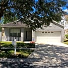 6525 Summer Cove Dr - Riverview, FL 33578