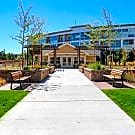 The Grove at Stapleton 55+ - Denver, CO 80238