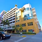 Modern Furnished Turnkey Penthouse 2072 sq ft o... - Tampa, FL 33602