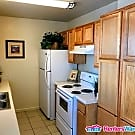 Great condition 1 Bed Condo ~ Pets Considered - Mesa, AZ 85210
