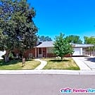 Updated Home for Rent in Ruby Hill Neighborhood - Denver, CO 80219