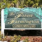 Forest In Farmington - Farmington, Connecticut 6032