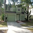 10903 Summerton Drive - Riverview, FL 33579