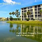Beautifully 2 Bedroom Condo In Well Maintained 55 - Bradenton, FL 34205