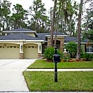 Beautiful 4/3/3 in the gated community of River... - Brandon, FL 33511
