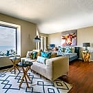 Furnished Studio - Chicago, IL 60611