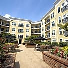 Ashley Square at SouthPark - Charlotte, North Carolina 28210
