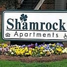 Shamrock Apartments - Raleigh, North Carolina 27605