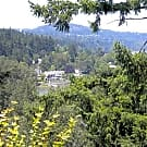 River Cliff Apartments - Portland, OR 97222