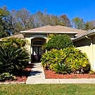 Beautiful 3/2 in Lake St. Charles - Riverview, FL 33578
