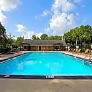 Stone Creek Pointe Apartments - Tampa, FL 33617