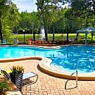 Stillwater Palms Apartments - Palm Harbor, FL 34683