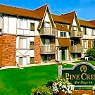 Pine Creek - Clio, Michigan 48420