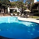 Turtle Creek Vista Apartments - San Antonio, TX 78229