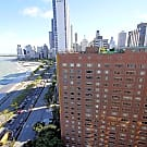 1350 North Lake Shore Drive Apartments - Chicago, IL 60610
