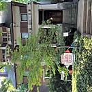 1 bedroom apartment with Romeo & Juliet Tower - Louisville, KY 40204