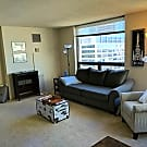 Studio, 1 bath Apartment - 440 N Wabash Ave, #2502 - Chicago, IL 60611