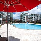 M Station Apartments - Charlotte, NC 28212