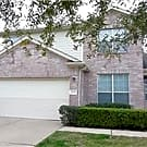 16322 Sitella Court - Sugar Land, TX 77498