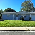 cute remodeled 2bed 1bath - Port Richey, FL 34668