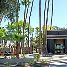 Palm Canyon - Tucson, AZ 85741