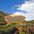 Newport Apartments - Tampa, Florida 33615