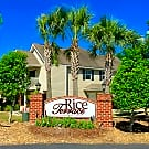 Rice Terrace Apartments and Townhomes - Columbia, SC 29229