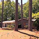 Absolutely immaculate renovated home !!! - Atlanta, GA 30360